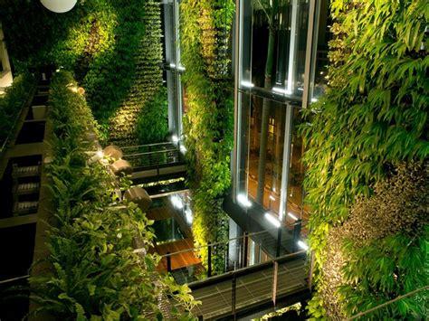 piante per giardini pensili giardini pensili tipi di giardini come vengono