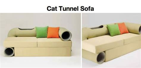 couch with cat tunnel cat tunnel sofa cat meme cat planet cat planet