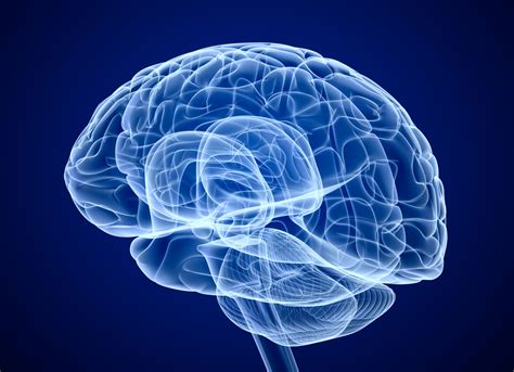 brain images brain scans may lead to better diagnoses