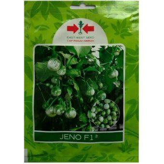 Benih Terong benih terong lalap hijau jeno f1 400 biji panah merah