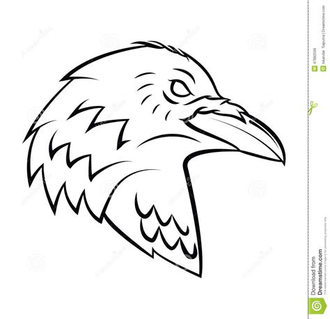 raven head tattoo stock vector image 47882599