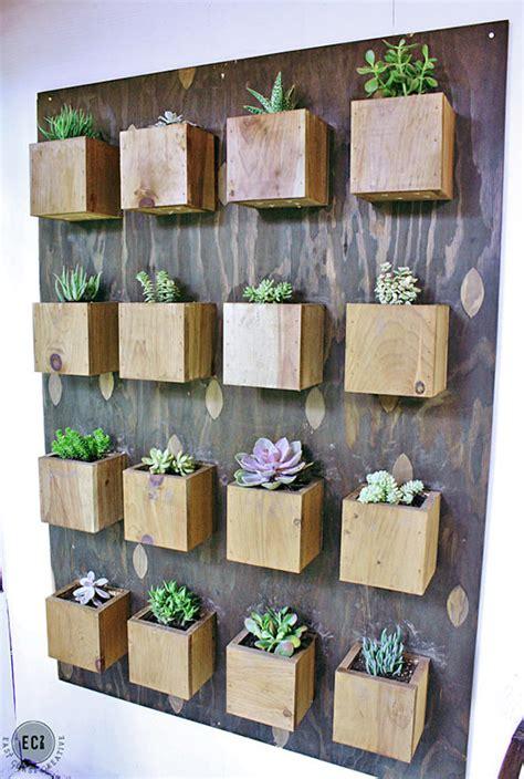 indoor cool cactus succulent projects  garden glove