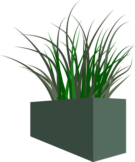 Grasses In Planters by Clipart Grass In Square Planter