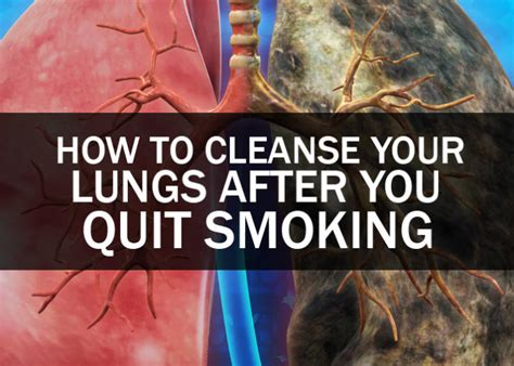 How Do You Detox Your From Nicotine by How To Cleanse Your Lungs After You Quit Health