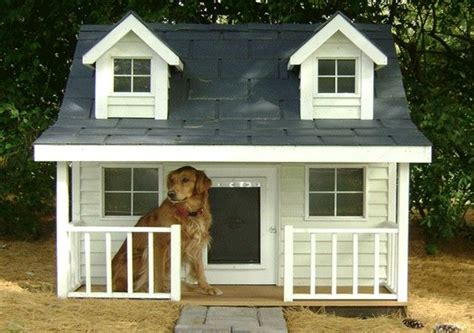 cool dog houses cool dog houses for large dogs pictures