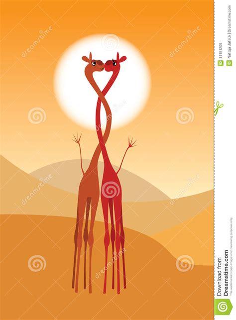 imagenes de amor jirafas jirafas de amor imagui