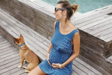 can dogs sense pregnancy the secret of pets soothes pet owner s fears
