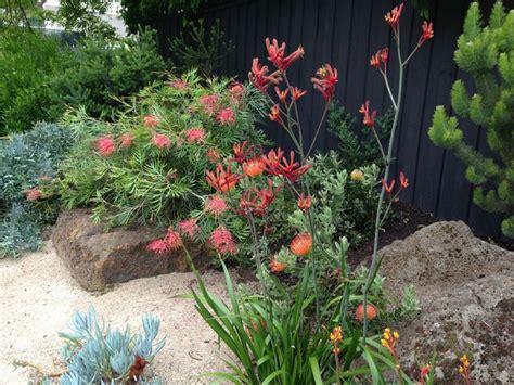 Plante Terre Acide by 47 Best Les Jardins De Ma Arbres Et Plantes En Terre