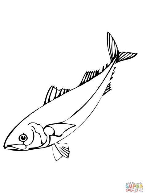 fish coloring pages games click the polar bear cub with fish coloring pages fish