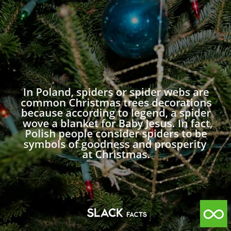 did you know in poland spiders or spider webs are common