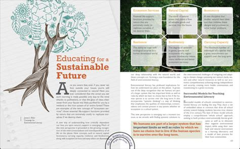 thesis about environmental education dreams aspirations essay