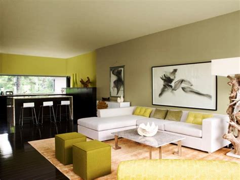 Painting Room by Attractive Living Room Colour Ideas Pictures 9 Living