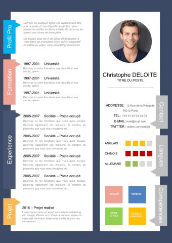 Exemple De Curriculum Vitae Professionnel by 240 Exemples De Cv Curriculum Vitae 224 T 233 L 233 Charger