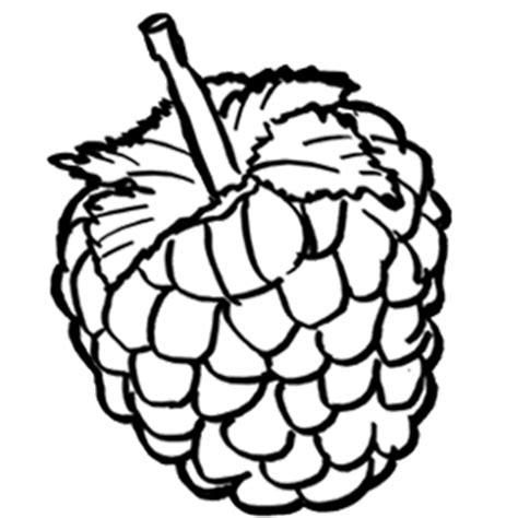 three raspberries coloring page free printable coloring menta m 225 s chocolate recursos y actividades para