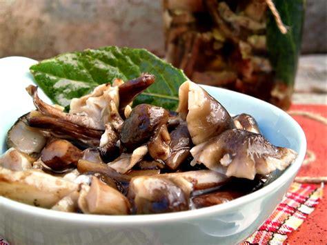 come cucinare i prataioli funghi prataioli sottolio home sweet home