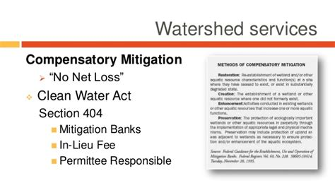 clean water act section 404 incorporating ecosystem markets and traditional forest