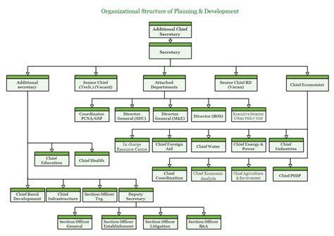 organogram chart related keywords organogram chart