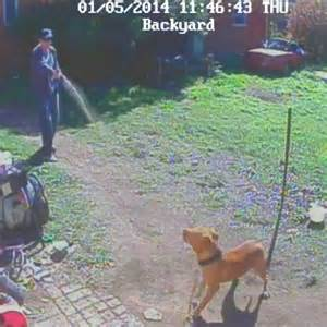 backyard broadcasting police officer filmed attacking chained dog with pepper