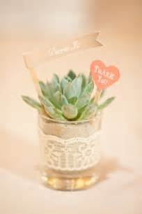 Plant Favors diy wedding plant favors are for a green wedding