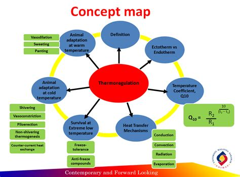 concept map animal physiology part 3 reflection concept map