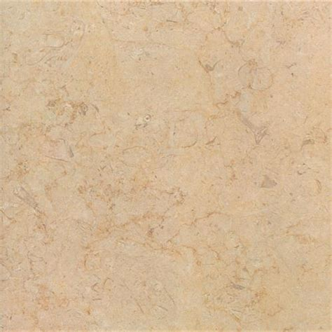 Carpet Tulsa Ok by Interceramic Sea Stone 13 Quot X 13 Quot Fossil Porcelain Tile