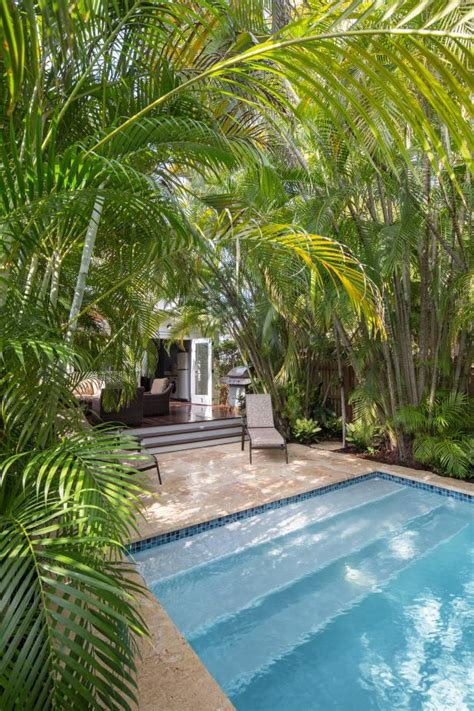 backyard oasis  tropical relaxing hgtv