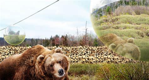 zoo designboom big envisions zootopia for givskud in denmark