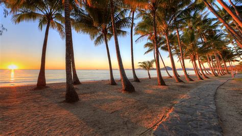 palm cove queensland beach wallpapers hd wallpapers