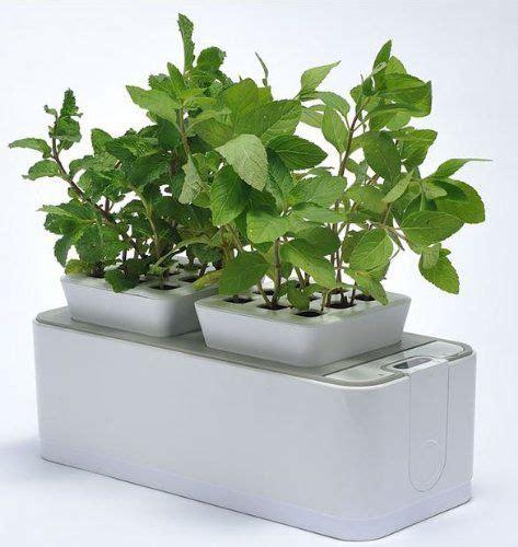 hydroponic indoor herb garden self watering indoor gardens hydroponics system
