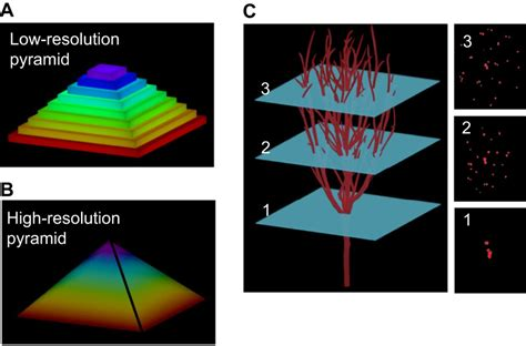 bioprinting improving  vitro models  metastasis