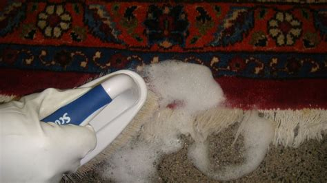 upholstery cleaning vancouver carpet cleaning north vancouver carpet review