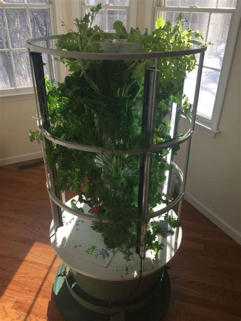 1000 images about tower garden vertical aeroponic