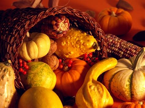 thanksgiving themed pictures the lightner group scoop your source for renting in san