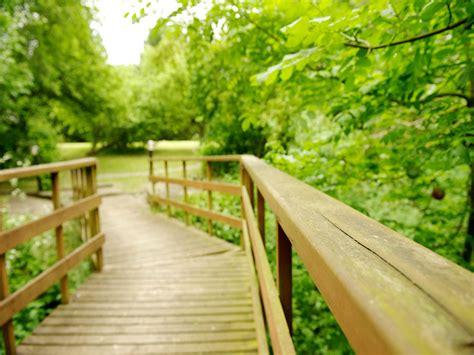 Http Www Bewellbuzz Journalist Buzz 3 Ways Detox Harsh Substances by Shamanic Healing Retreat Can A Detox Change Your