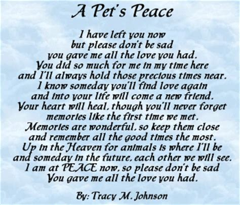 This page is dedicated to our furry companions and friends who have