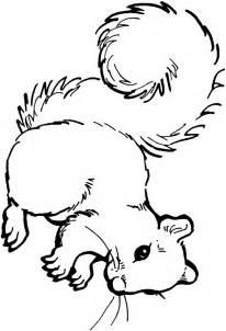 squirrel coloring pages squirrel pattern printable coloring home