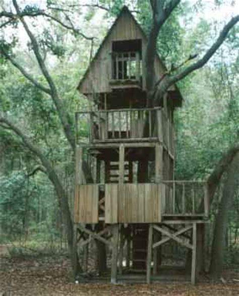 how to build a tree house treehouse construction techniques how to build tree houses