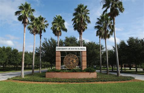 Univeristy Of South Florida Mba by Top 20 Up And Coming Master S Degree Programs In