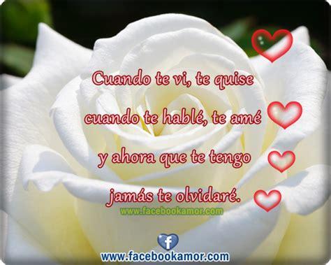 imagenes de rosas blancas para portada de facebook hermosas im 225 genes de rosas blancas grandes para facebook