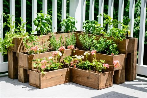 3 diy herb gardens you ll want to grow huffpost diy tiered herb garden decor and the dog