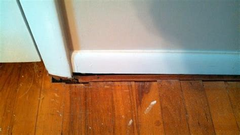 How to handle gaps between floor and wall trim