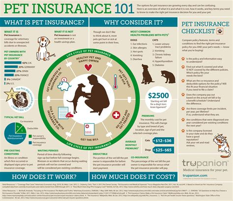pet insurance for dogs infographic pet insurance 101 the trupanion