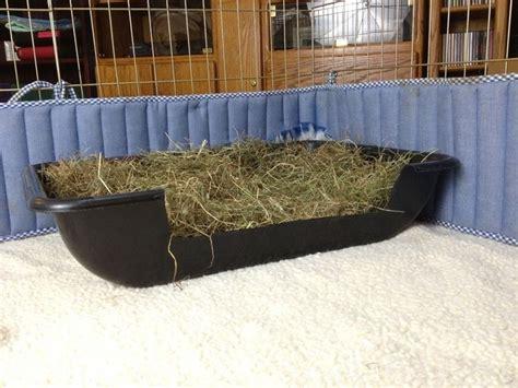 paglia per lettiere lettiera per conigli accessori animali consigli sulla