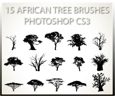 8 tree background patterns photoshop free brushes 15 african tree brushes pscs3 by charfade on deviantart