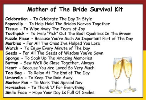 One For All Gift Card Ireland - mother of the bride survival kit in a can humorous novelty gift wedding day thank