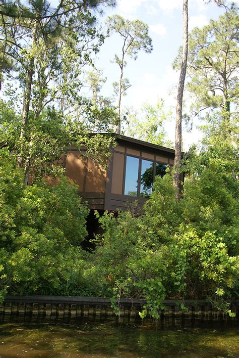 Treehouse At Disney - new treehouse villas buildings photo 1 of 6