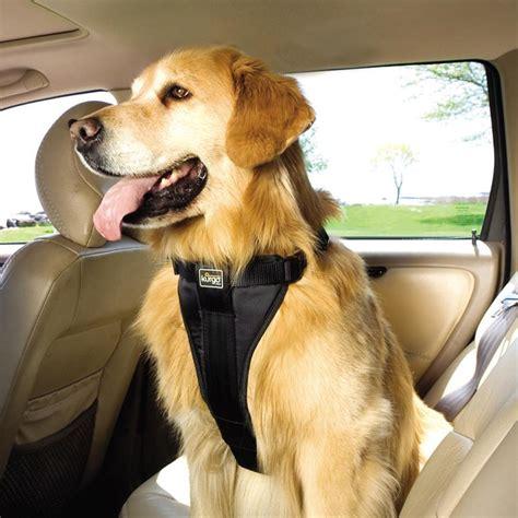 si鑒e auto pour chien harnais de voiture pour chien le jardin des animaux
