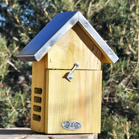 ladybug house plans ladybug house plans woodworking projects plans