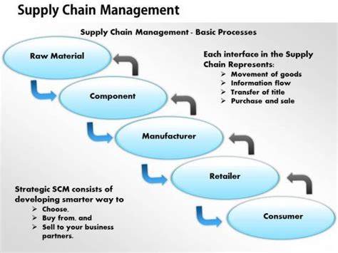 Southern Arkansas Mba Supply Chain by Best 25 Supply Chain Process Ideas On 5 S