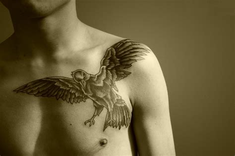 raven shoulder tattoo shoulder tattoos designs and ideas
